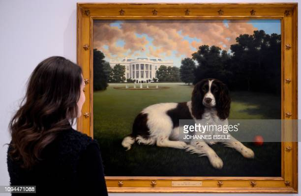 This picture taken on February 1 2019 in New York City shows a worker of the American Kennel Club Museum of the Dog looking at a painting of Millie...