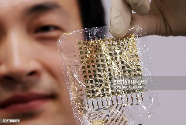This picture taken on January 22, 2016 shows South Korean researcher Lee Sung-Won of Tokyo University's graduate school of engineering holding a...