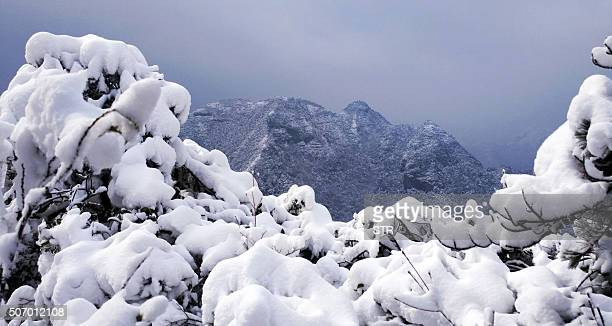 This picture taken on January 23 2016 shows the snowcovered scenery of Shenxianju Mountain near the city of Taizhou in eastern China's Zhejiang...