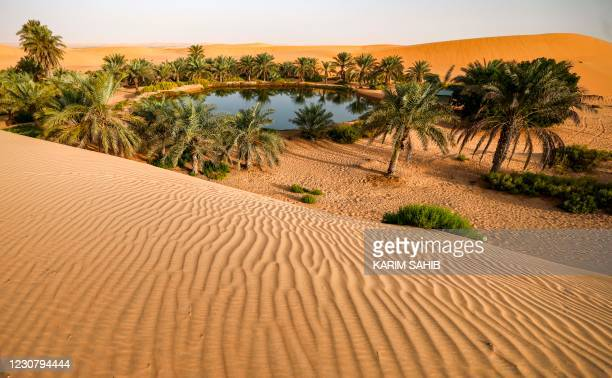 This picture taken on January 26, 2021 shows a view of an oasis in the middle of the desert at a resort on the outskirts of the city of al-Ain at the...