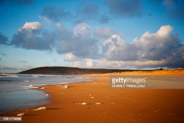 This picture taken on January 30 2019 shows the beach near of the town of Surtainville northwestern France where two airplane seat cushions that...