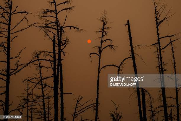 This picture taken on July 27 shows the sunlight filtered through smoke from burning forests near the village of Magaras in the republic of Sakha,...