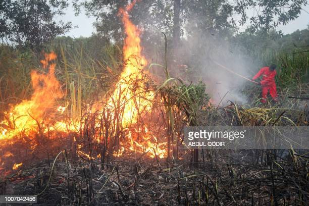 This picture taken on July 28 2018 shows a firefighter attempting to extinguish a fire in the Pamulutan village in Ogan Komering Ilir South Sumatra...