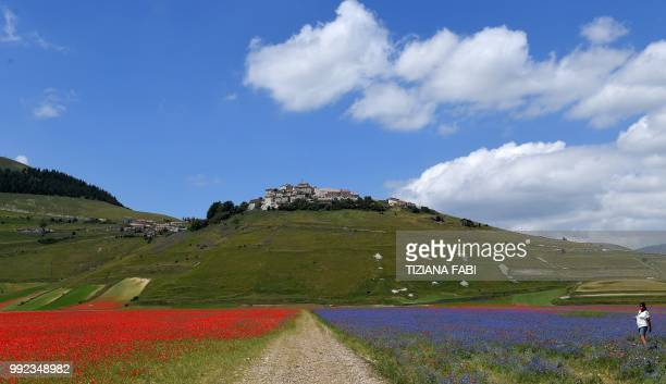 TOPSHOT This picture taken on July 5 2018 shows the small village of Castelluccio in central Italys Umbria region