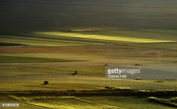 This picture taken on July 8 2017 shows flowers in bloom including lentil fields and poppies near Castelluccio a small village in central Italys...