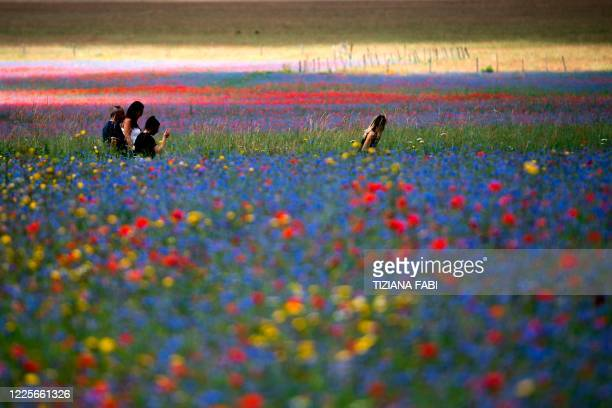 This picture taken on July 8, 2020 shows people walking across lentil fields and blooming poppy flowers near Castelluccio, a small village in central...
