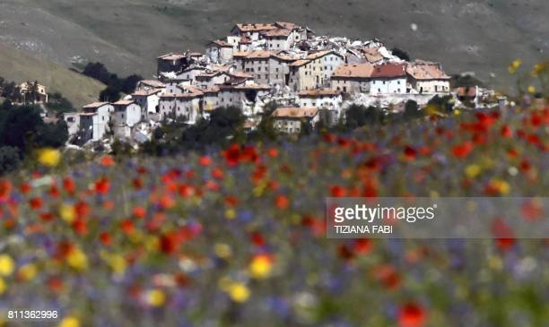 TOPSHOT This picture taken on July 9 2017 shows lentil and poppies fields in bloom near Castelluccio a small village in central Italys Umbria region...