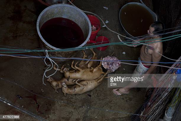 This picture taken on June 17 2015 shows a man cleaning dead dogs before they are chopped up for meat in Yulin in southern China's Guangxi province...