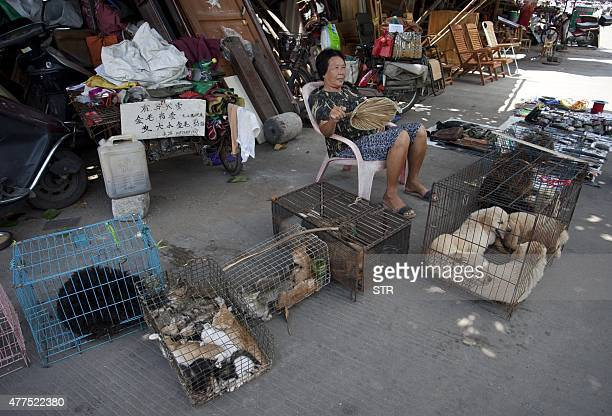 This picture taken on June 17 2015 shows a woman selling dogs and cats by a street in Yulin in southern China's Guangxi province People from Yulin...