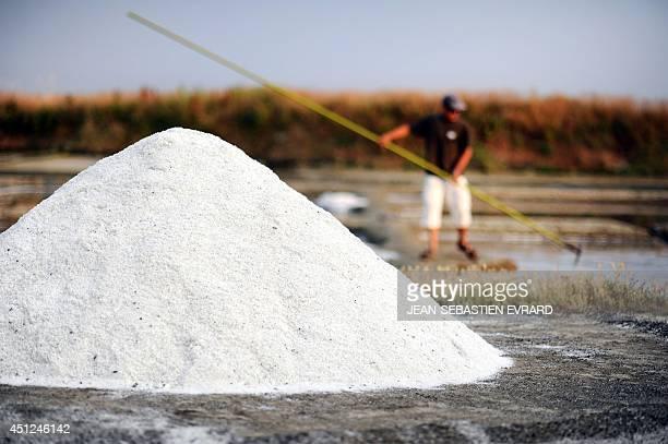 This picture taken on June 24 2014 in Guerande western France shows a mound of salt as Guillaume Baholet a salt worker harvests salt at the salt...