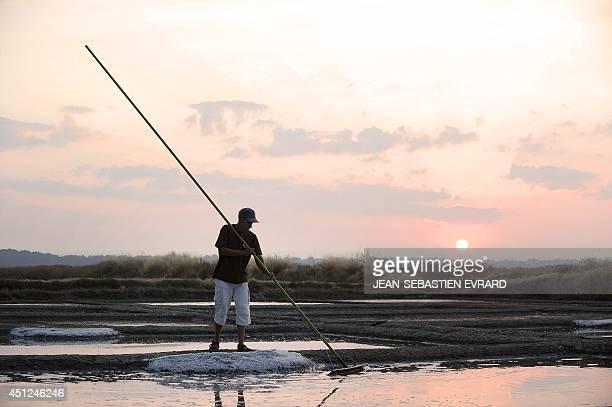 This picture taken on June 24 2014 in Guerande western France shows Guillaume Baholet a salt worker harvesting salt at the salt plant 'Les salines de...