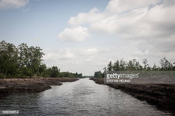 This picture taken on June 8 2016 shows a water way in the Niger Delta The oil rich Delta region in Nigeria has seen the rise of a new militant group...