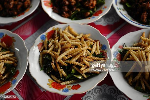 This picture taken on March 15 2011 shows plates of fried silkworms for sale at a local market in Vientiane AFP PHOTO / HOANG DINH Nam