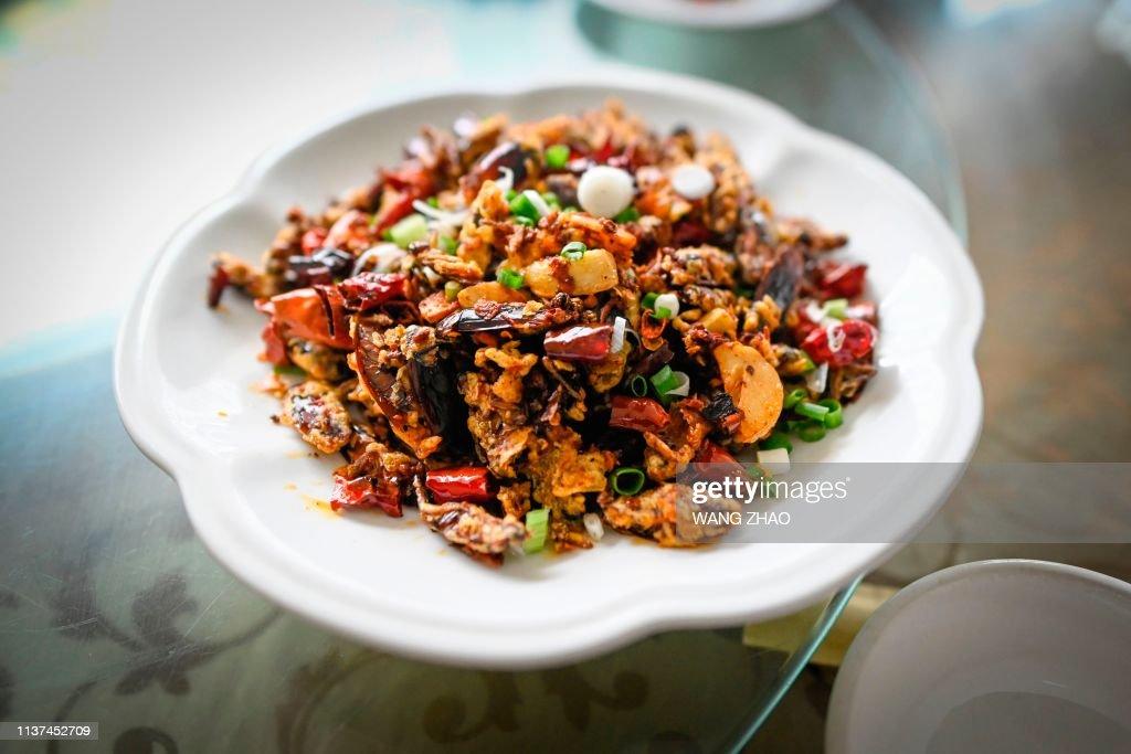 CHINA-FARMS-FOOD-COCKROACH : News Photo