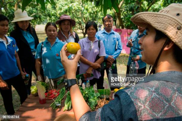 This picture taken on March 28 2018 shows Prokchol Ousap head of the Thai Pesticide Alert Network speaking to a group of farmers during an organic...