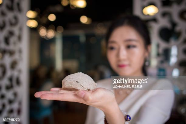 This picture taken on May 23 2017 shows Elaine Zhang owner of the NestCha restaurant presenting a dried birds nest in her restaurant in Shanghai The...