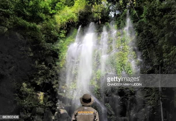 This picture taken on May 8 2017 shows an Indonesian forest ranger admiring the sight of a waterfall in the Leuser ecosystem rainforest located...