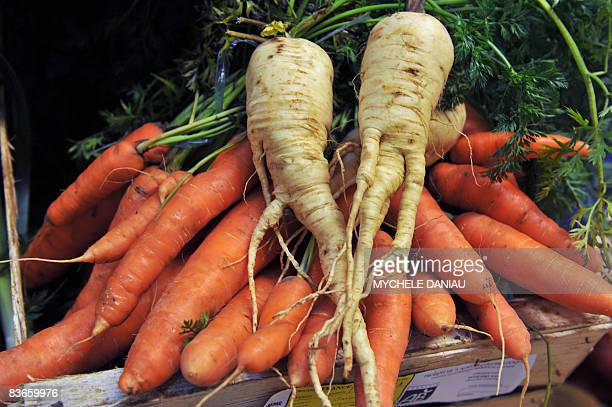 This picture taken on November 12 2008 in HerouvillestClair Normandy of carrots and parsnips as EU nations gave today the green light for bent...