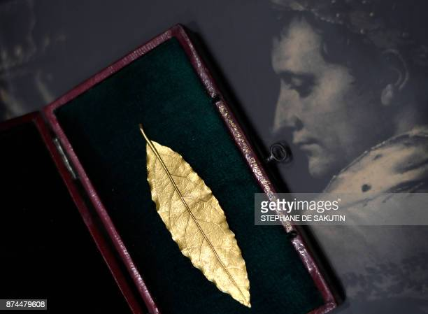 This picture taken on November 15 2017 in Paris shows a gold laurel leaf from the coronation crown of Emperor Napoleon I The gold leaf is due to be...