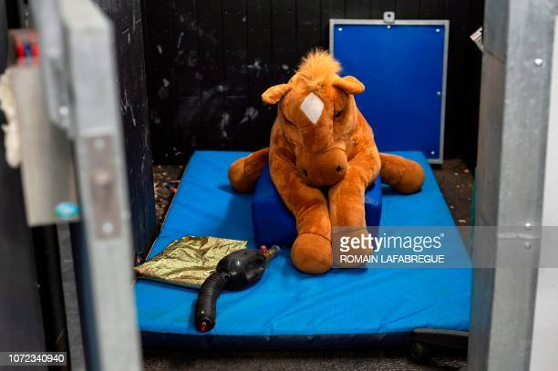 This picture taken on November 20 shows a toy horse used for the training of veterinarian students in a box of the equine clinical unit 'Clinequine'...