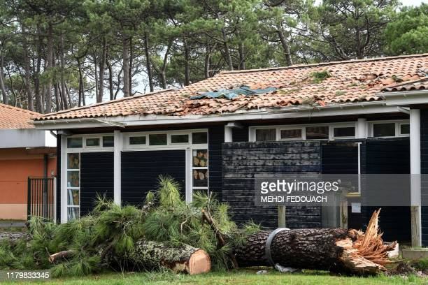 This picture taken on November 3 shows the school group Antonia Guittard and fallen trees, after the storm Amelie. - Some 100,000 households were...