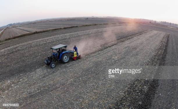 This picture taken on October 18 2015 shows a farmer using a tractor to plough a field in a village in Bengbu east China's Anhui province China's...