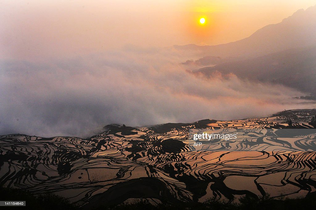 This picture taken on on March 11, 2012 shows a hillslope of paddy fields in the mountainous region of Yuanyang, southwest China's Yunnan province. The world's deforestation rate has accelerated to 6.4 million hectares a year, a new UN survey showed but Asia showed net gains in forest land-use largely due to extensive planting in China. CHINA