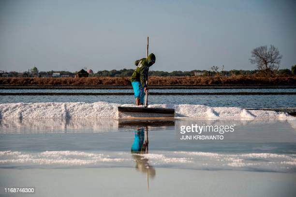 TOPSHOT This picture taken on September 16 2019 shows an Indonesian worker harvesting salt in Sidoarjo East Java province