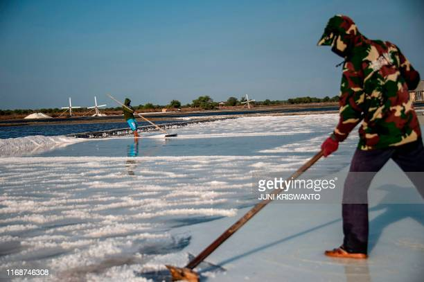 This picture taken on September 16 2019 shows Indonesian workers harvesting salt in Sidoarjo East Java province