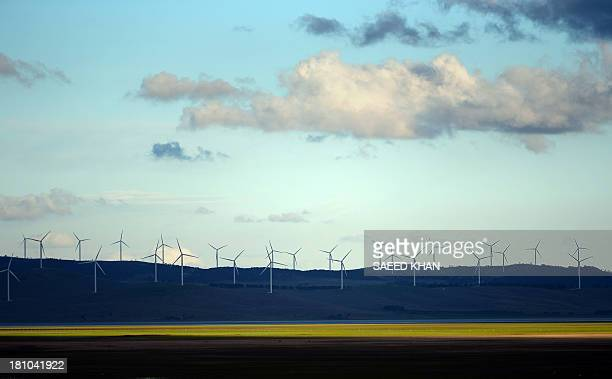 This picture taken on September 18 2013 shows wind turbines on the outskirts of Canberra Australian Prime Minister Tony Abbott was elected on...