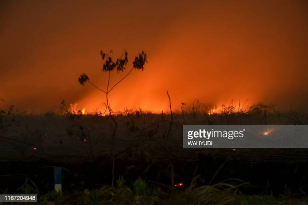This picture taken on September 9 2019 shows a forest fire lighting up the night sky in Kampar Riau Huge fires are raging across vast swathes of...