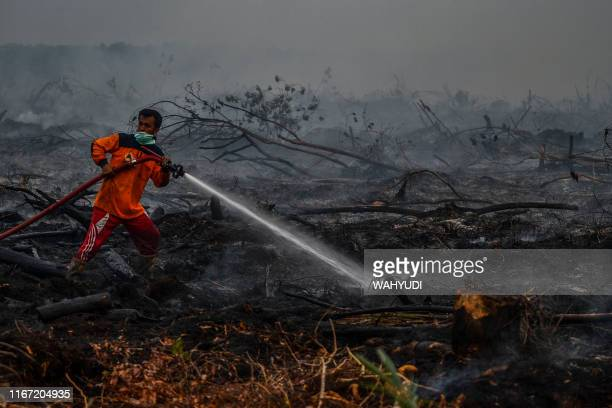 This picture taken on September 9 2019 shows Indonesian firefighters battling a forest fire in Kampar Riau Huge fires are raging across vast swathes...