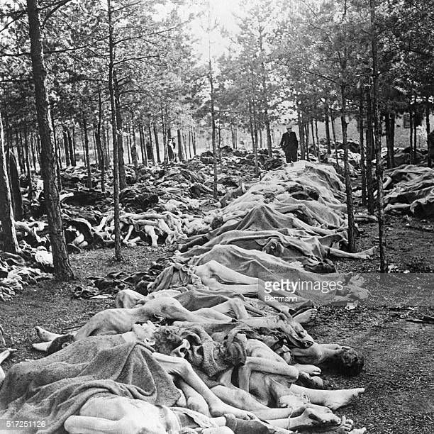 This scene at the Nazi concentration camp at Belsen shows part of the endless pile of corpses of some 60000 civilian prisoners awaiting burial...
