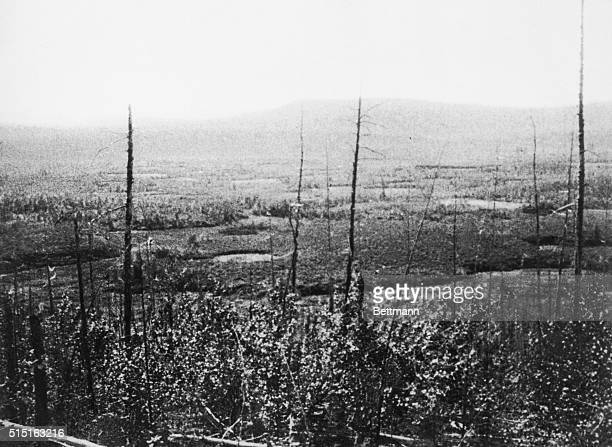 This section of Siberia was struck by falling meteor pieces on July 30 1908 in what was called the Tunguska event The meteor exploded upon entering...
