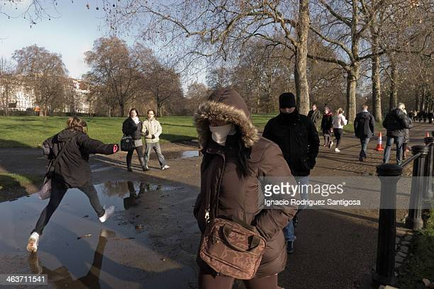 This shot was taken during a walk, near from Buckingham Palace, In Constitution Hill road. It was taken in december 2009; a sunny day but very cold...