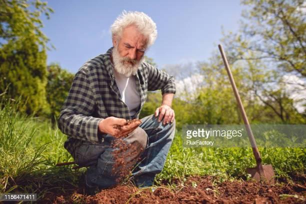 この土壌は植物が育つのにとても良い - 耕す ストックフォトと画像