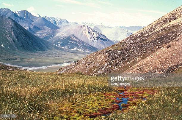 This undated photo shows the Hulahula Valley in the Arctic National Wildlife Refuge in Alaska The Bush administration''s controversial plan to open...