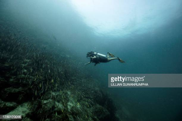 This underwater picture taken on November 18, 2020 shows a diver near Koh Lipe island, a popular diving area in the Andaman Sea, off the southern...