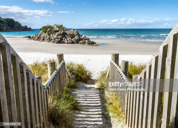 this way to the beach. - mount maunganui stock pictures, royalty-free photos & images