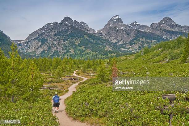 mature woman hiking in the tetons - jackson hole stock pictures, royalty-free photos & images