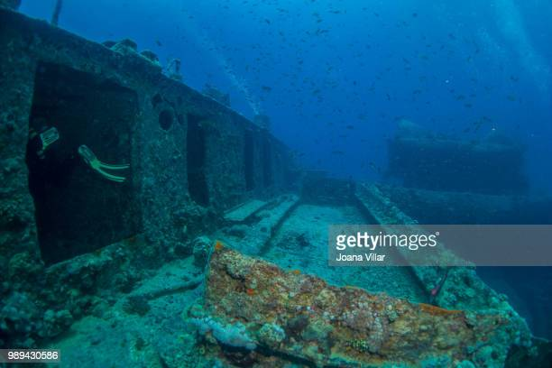ss thistlegorm - sunken stock pictures, royalty-free photos & images