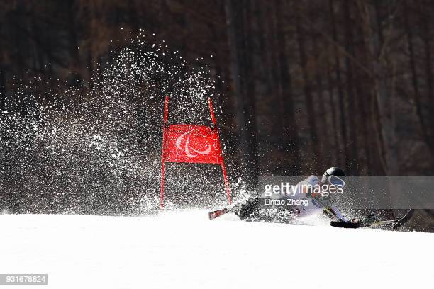 Thomas Nolte of Germany competes in the Men's Giant Slalom Run 1 Sitting at Alpensia Biathlon Centre on day five of the PyeongChang 2018 Paralympic...