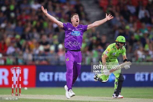 Thomas Rogers of the Hurricanes successfully appeals for the wicket of Callum Ferguson of the Thunder during the Big Bash League match between the...
