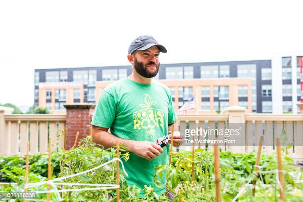 Thomas Schneider the founder and executive director of Rooftop Roots in one of his gardens in a building with mixeduse Schneider's organization...