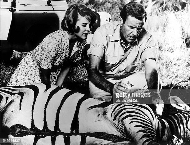 Thompson Marshall 1992Schauspieler USA Rollenportrait mit Cherryl Miller in der Fernsehserie 'Daktari' bei der Behandlung eines Zebras veroeff 1969