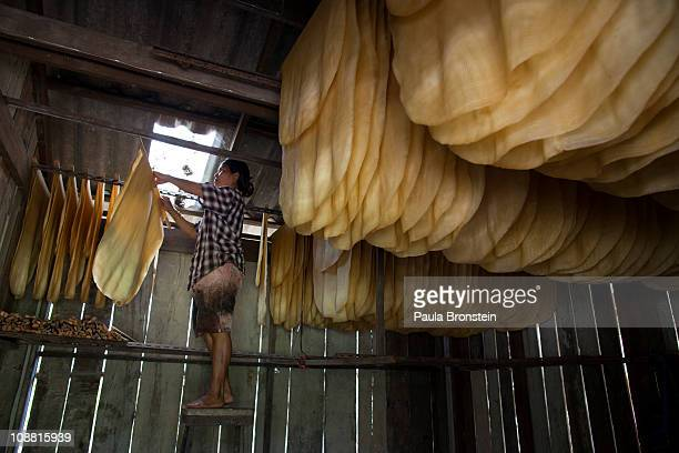 Thongshin Klaharn 49 hangs sheets of rubber in the rubber drying shack at the rubber workshop on February 3 2011 in Rayong Thailand Thongshin and her...