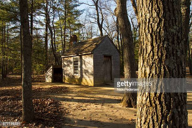 thoreau's cabin at walden pond - walden pond stock pictures, royalty-free photos & images