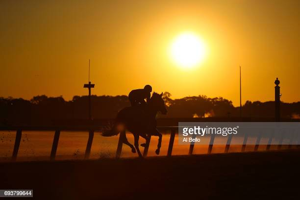 Thoroghbred and Exercise Rider train prior to the 149th running of the Belmont Stakes at Belmont Park on June 8 2017 in Elmont New York