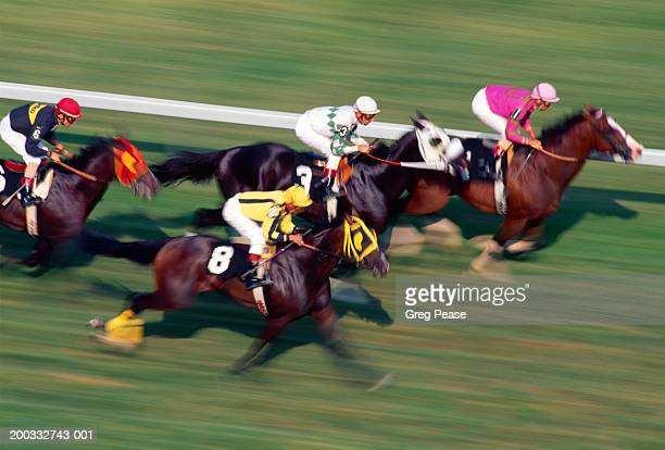 thoroughbred horse race on turf (digital enhancement, blurred motion) - thoroughbred_horse_racing stock pictures, royalty-free photos & images