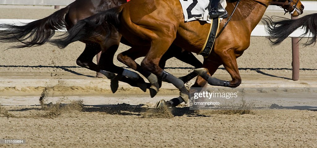 Thoroughbred horse racing - Galloping : Stock Photo